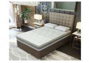Mammoth Shine Essential Plus Mattress